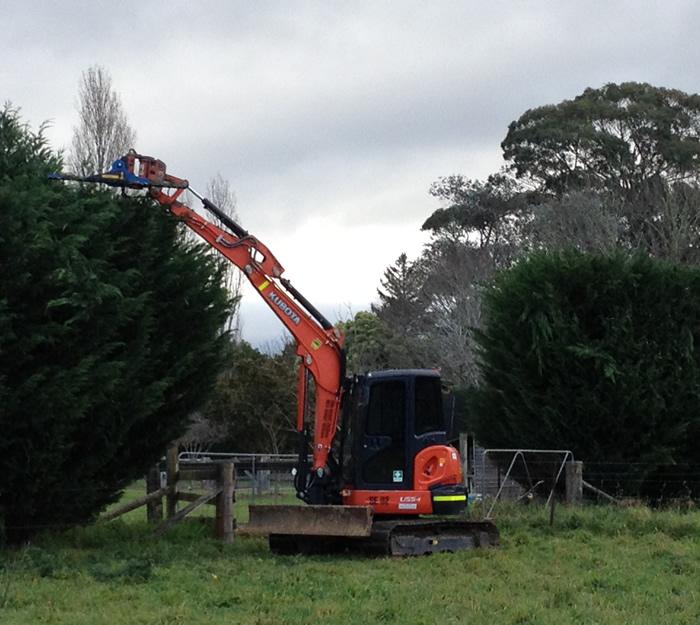 fleet-hedge trimmer