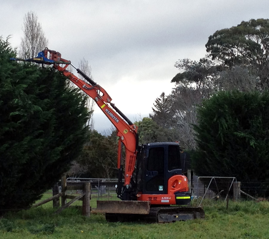 Hedge Trimming Southern Highlands